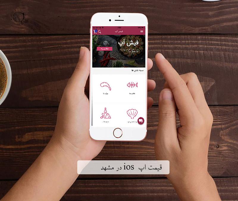 قیمت نرم افزار ios در مشهد